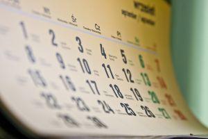 לוח שנה המסמל כיצד חולפת לה שנת הבדק - אילוסטרציה